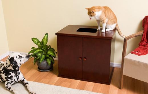 Small Dog Proof Litter Box