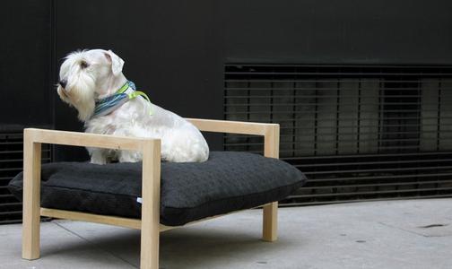 raised dog crate