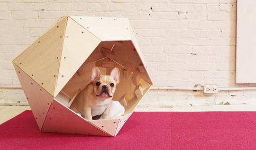 stylish dog crate