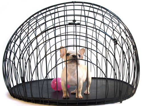 wired dog crate