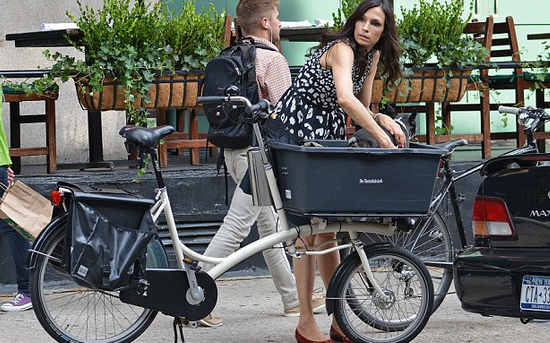 How To Make A Bike Basket For Dog