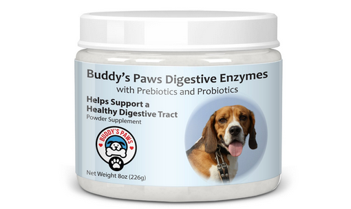 Dog upset stomach remedy