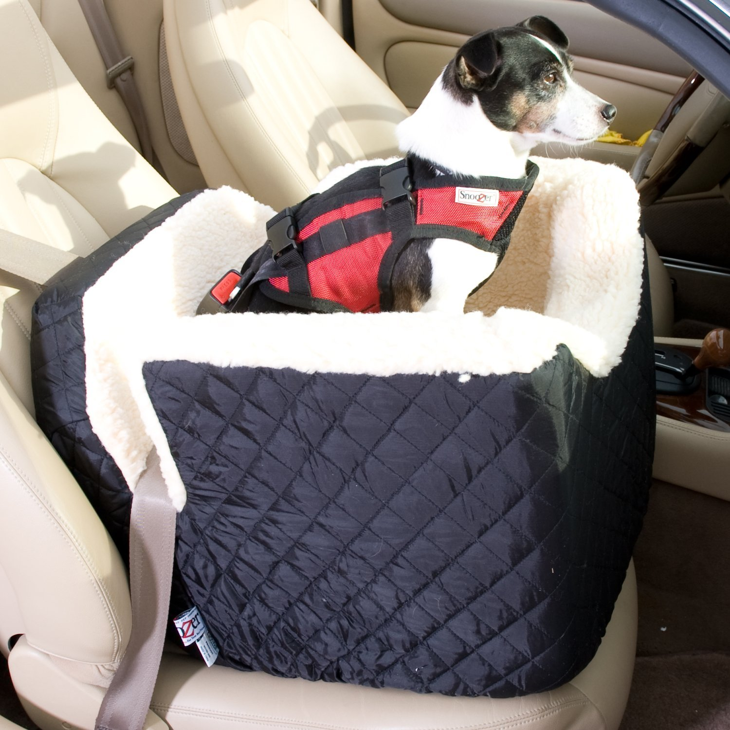 best car booster seat for car and small dog