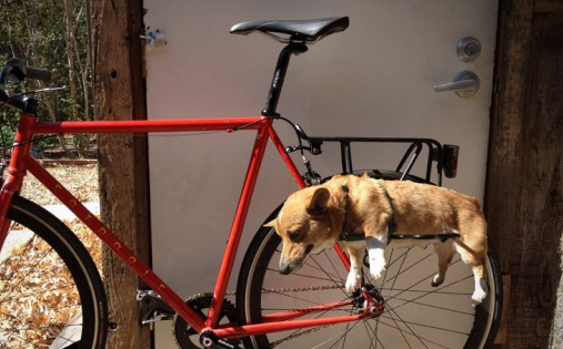 Dog bike rack
