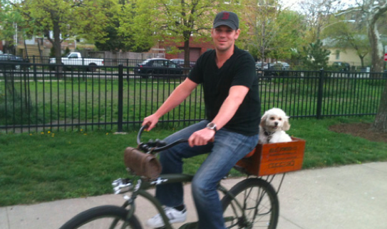 Wooden box as dog bike basket