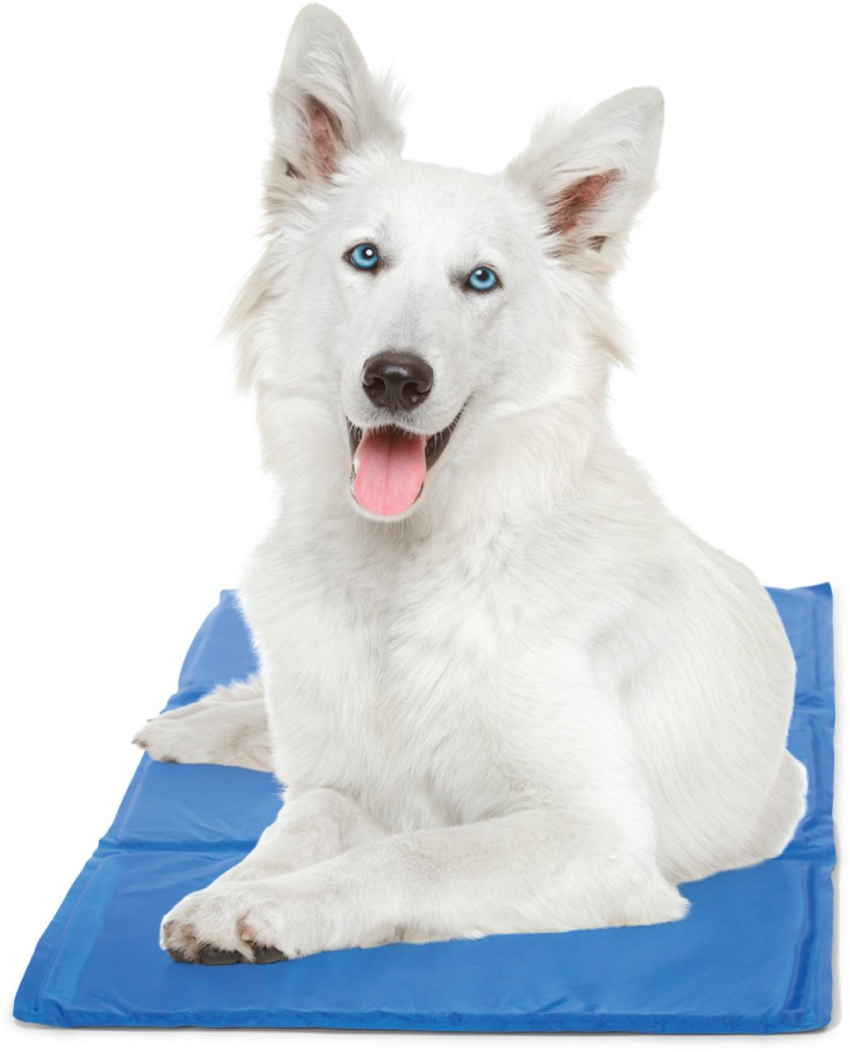 best dog cooling pad
