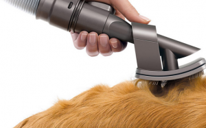 Head to head review: dyson groom vs furminator
