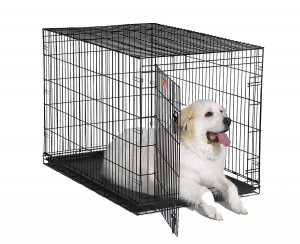 MidWest 1548 iCrate Single Door Pet Crate