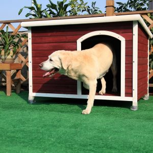 Petsfit-Dog-House-for-Big-Dogs